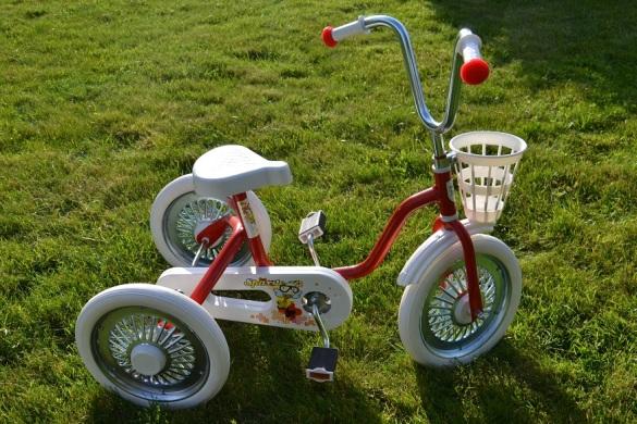 spārīte trīsritenis, tricycle, design registration, community trade mark